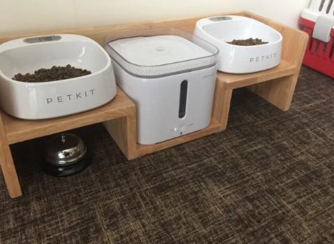 新手養狗 飲水器