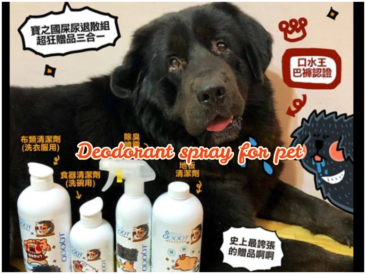 寵物除臭大作戰!室內除臭噴霧、寵物地板清潔劑推薦,人氣寵物作家-寶總監來開箱!