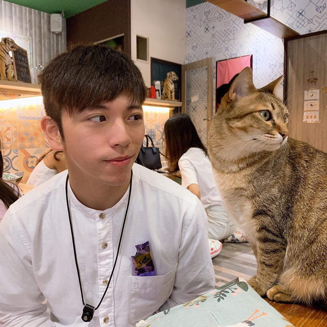 貓泰泰 Mao Thai Thai