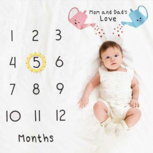 寶寶拍照背景