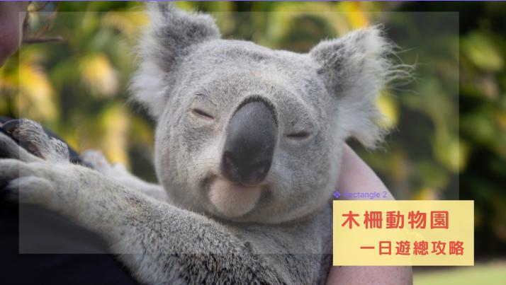 木柵動物園攻略|必看熱門館區、交通方式、參觀路線總整理,無尾熊/熊貓圓仔融化你心!