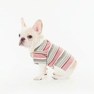 線上寵物展-寵物衣服