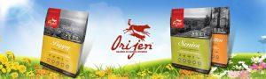 線上寵物展-渴望(Orijen)