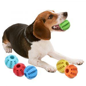 線上寵物展-磨牙玩具