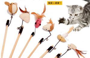 線上寵物展-逗貓棒