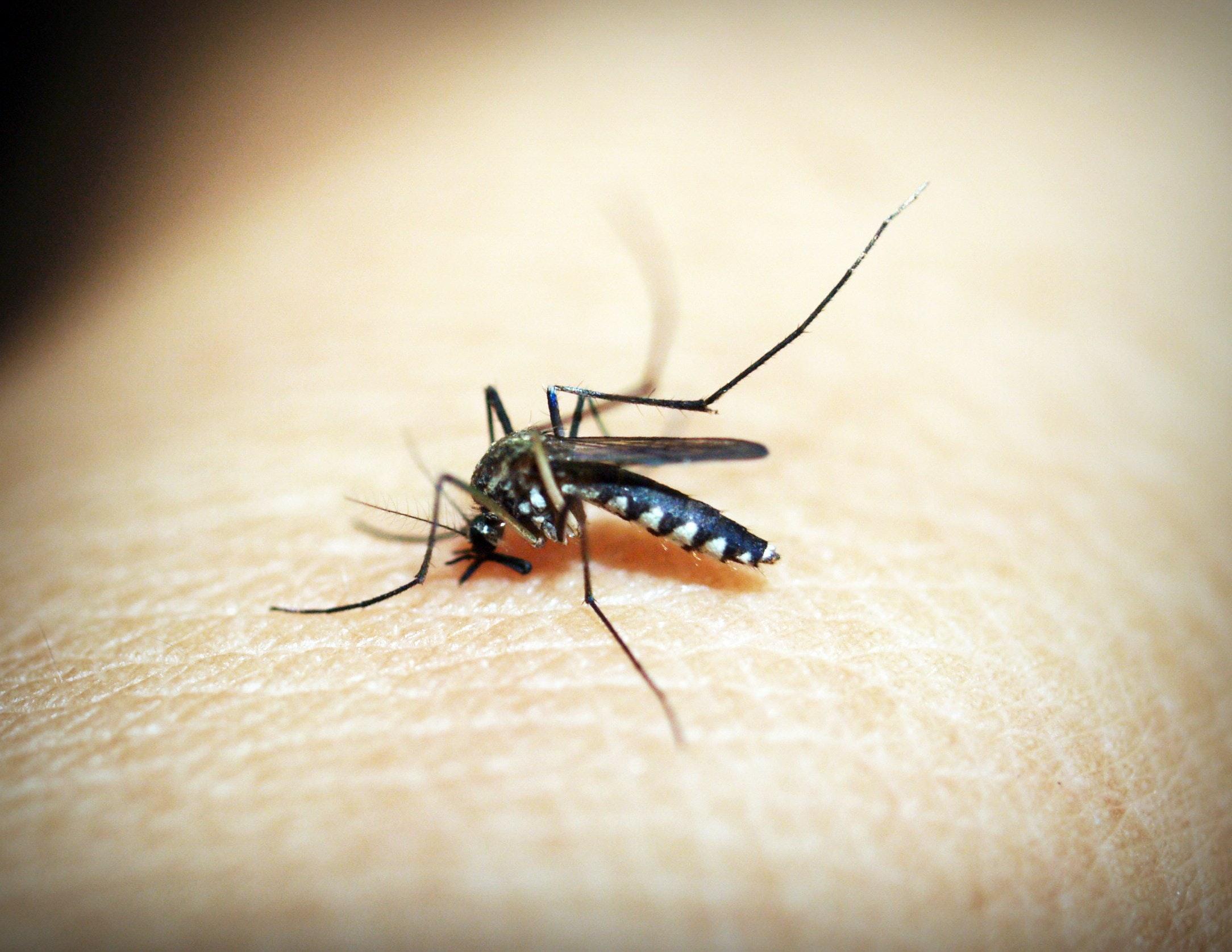 嬰兒防蚊推薦