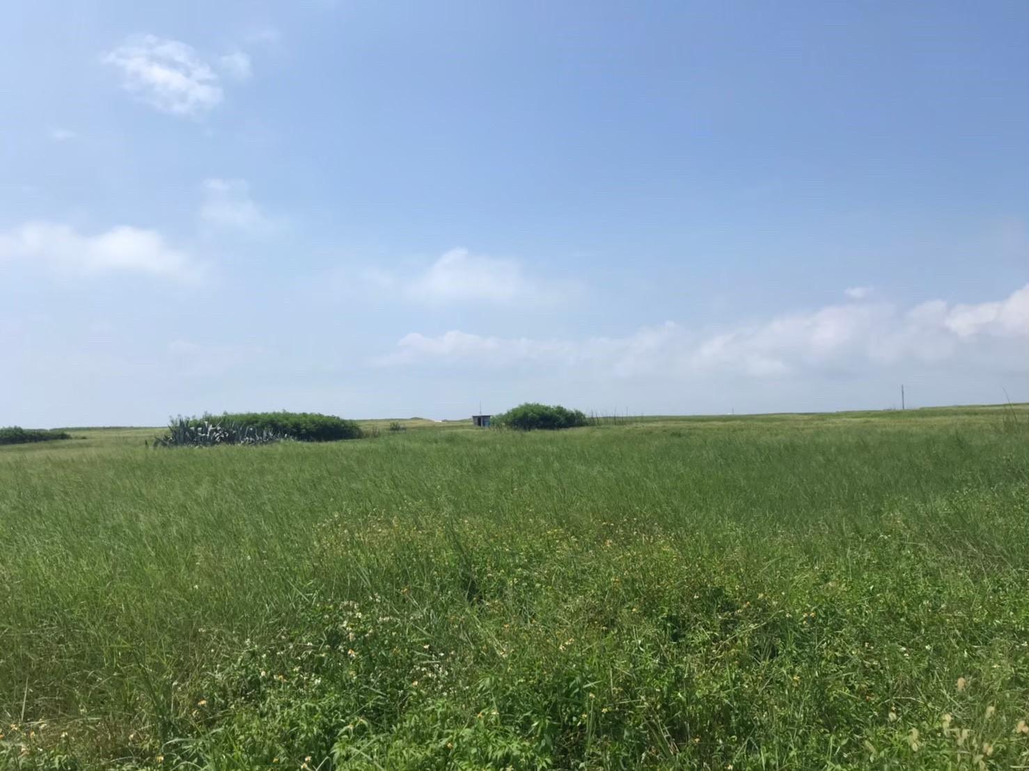 天台山草原