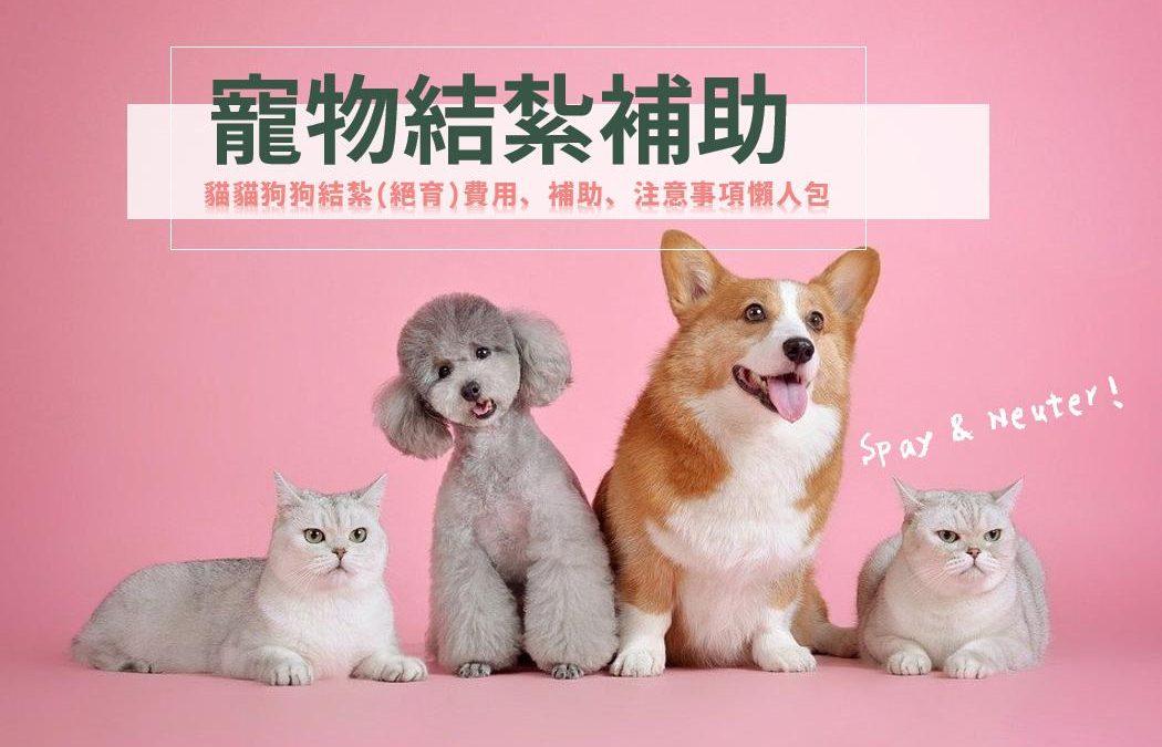 寵物結紮補助|2021 貓咪狗狗結紮絕育補助費用&注意事項總整理