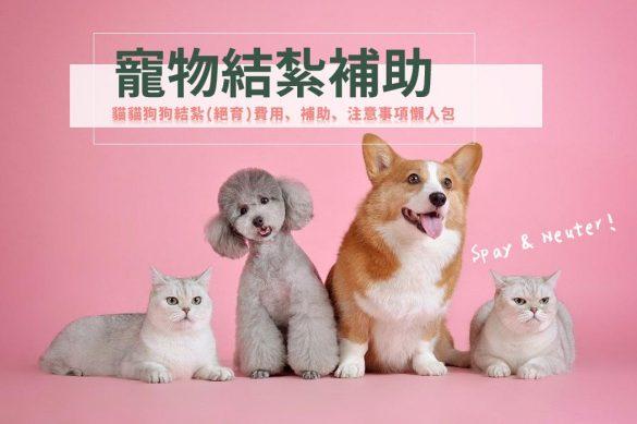 結紮補助 寵物節育補助