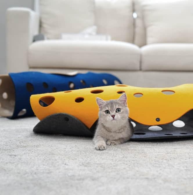 貓咪隧道玩具
